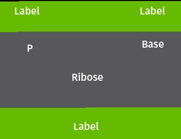 Nucleotide Selector