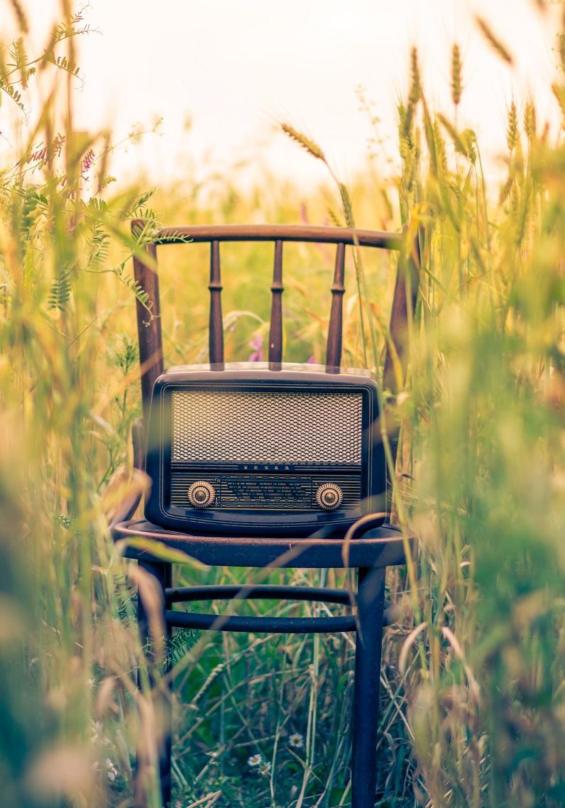 Foto: Alex Blajan. Quelle: Unsplash.com