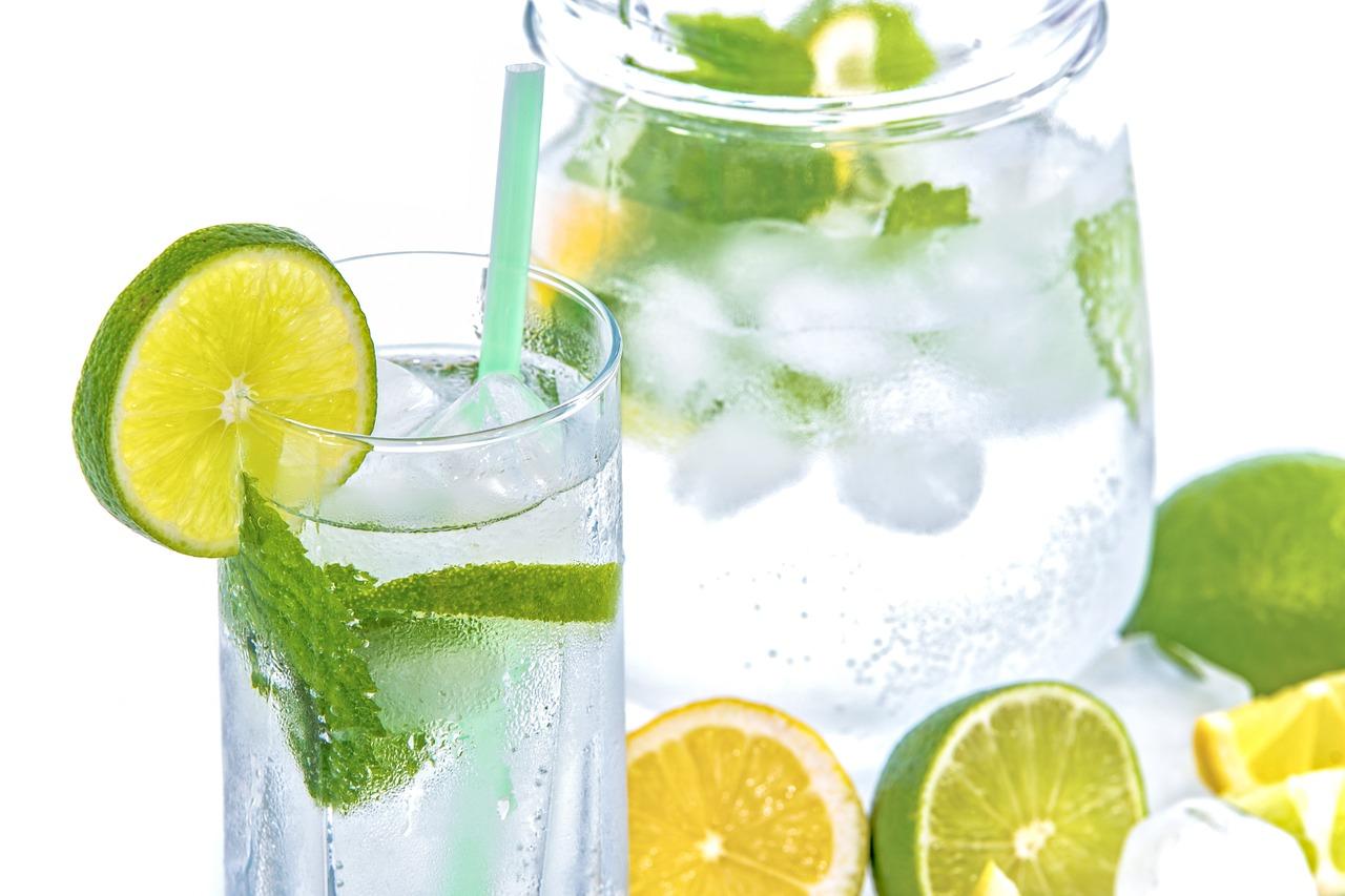 Wasser mit Limette, Zitrone und Minze