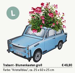 Trabant Blumenkasten groß