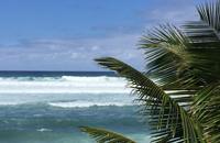 Spirituell geführte, wunderschöne Hawaii Gruppenreise