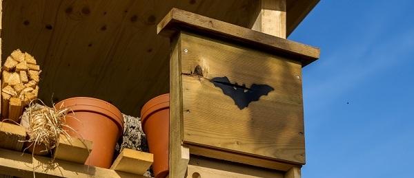 Lebensturm Fledermauskasten