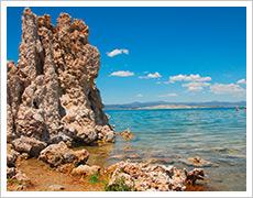 Breathing in a saline water world: the alkali flies of Mono Lake