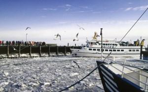 Winter-Schifffahrten-Adler