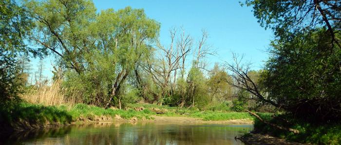 River Raab