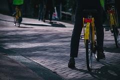 Radweg Photo by Yannis Papanastasopoulos on Unsplash