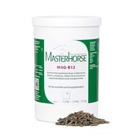 MASTERHORSE MAG-B12