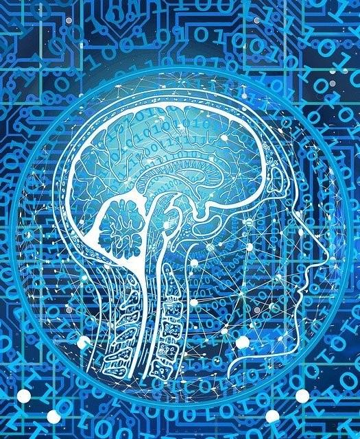 Schematische Darstellung Gehirn