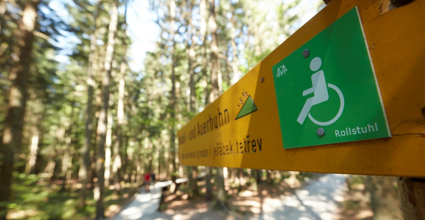 Wegweiser im Wald mit einem Rollstuhlsymbol.