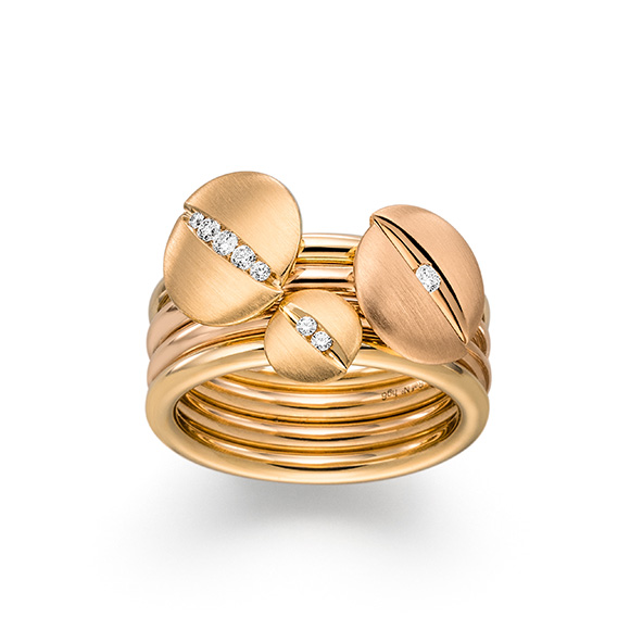 Eine mögliche Ringkombination