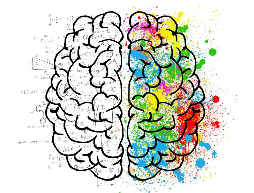 Symbolbild Gehirn