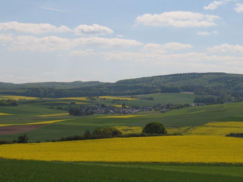 Lohrheim
