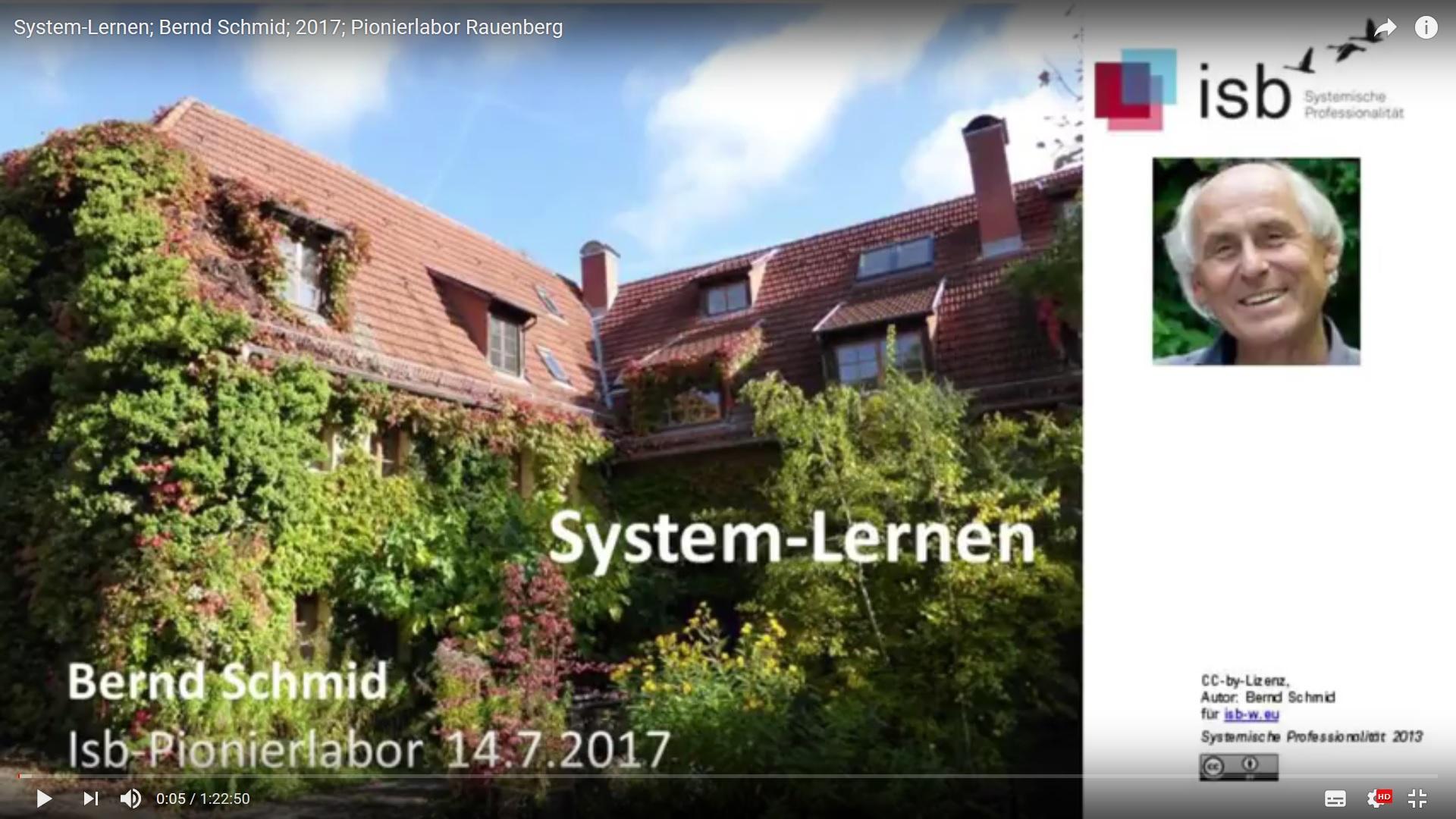 Bernd Schmid über System-Lernen