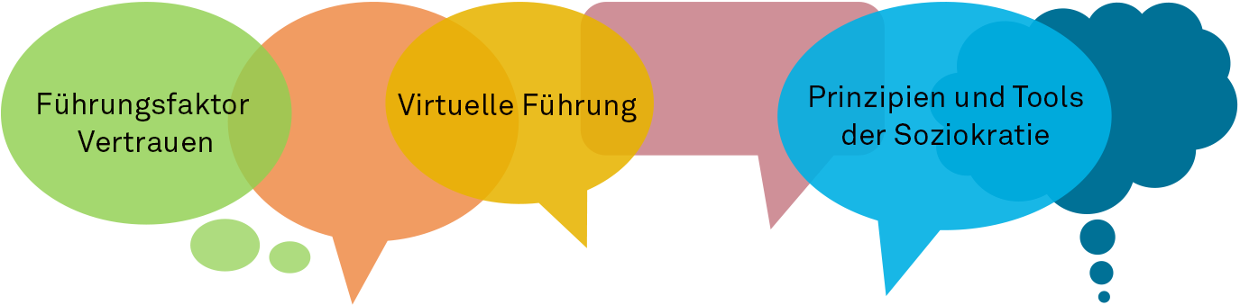Online Sessions der Schmid Stiftung