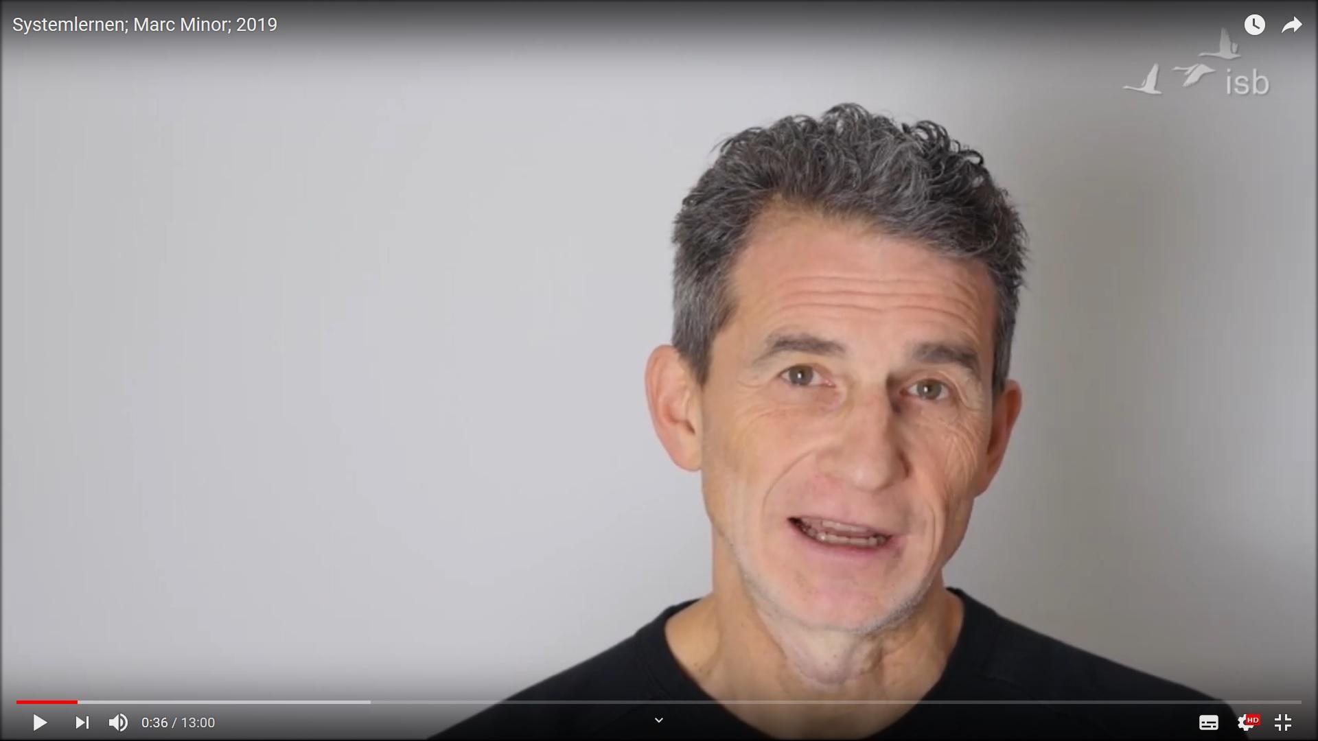 Lehrtrainer Marc Minor über Systemlernen