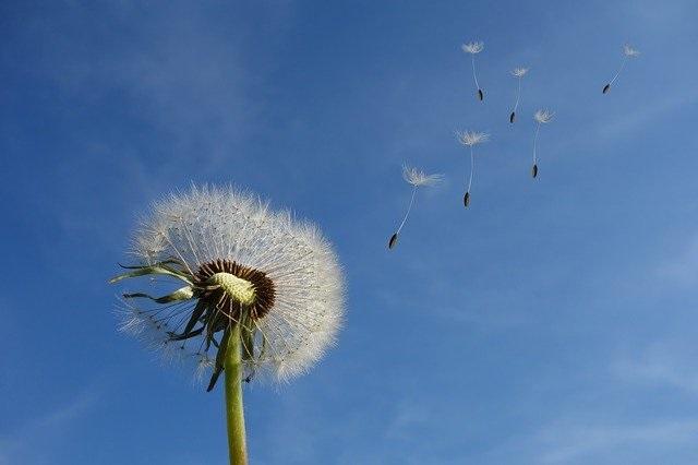 Palliative und Spiritual Care