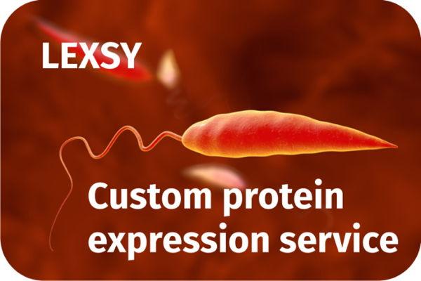 LEXSY - Custom protein expression service