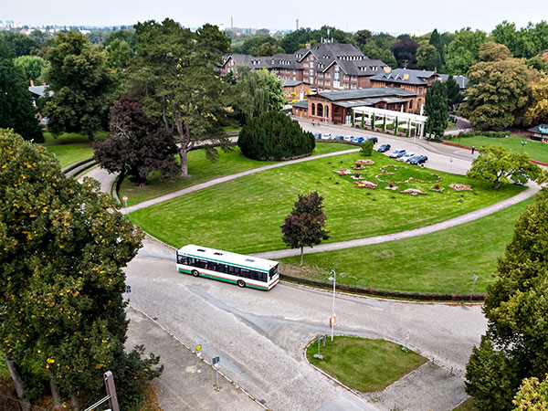 Bus im Herrenkrug (Foto: Stefan Deutsch)
