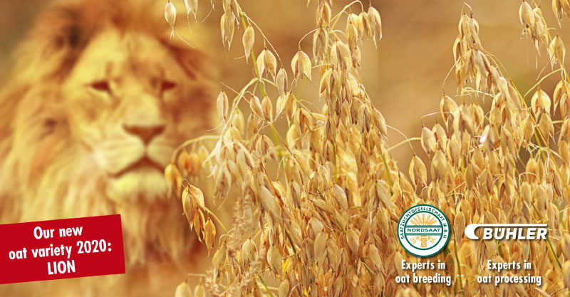 Oat Convention 2020