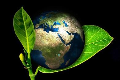 Erde und Schöpfung