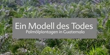 """Titelbild Video """"Modell des Todes"""". Quelle: www.ci-romero.de"""