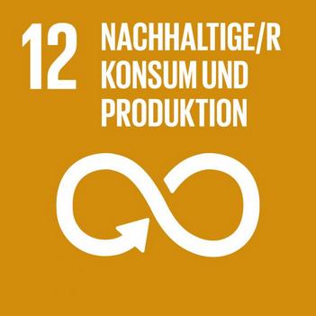 Logo SDG 12. Quelle: 17ziele.de