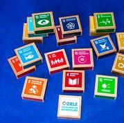 SDG-Holzklötze. Quelle: biwina.de