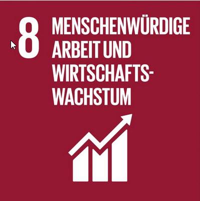 Logo SDG 8. Quelle: 17ziele.de