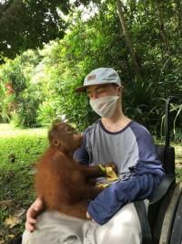 Die Rettung der Orang-Utans. Bildquelle: henry-rettet-den-regenwald.bildungsblogs.net
