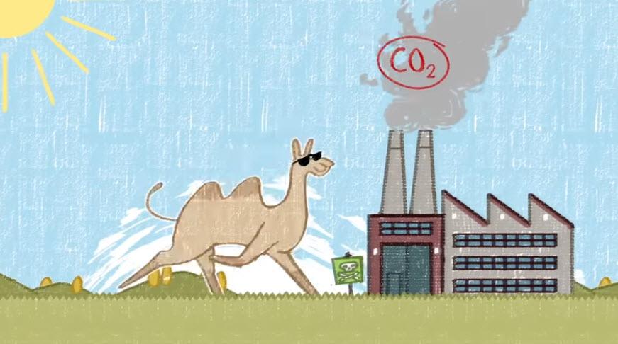 "Ausschnitt Erklärvideo ""Das ist Klimawandel"". Quelle: sternsinger.de"