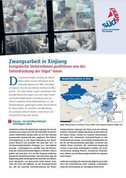 Factsheet Zwangsarbeit. Quelle: suedwind-institut.de