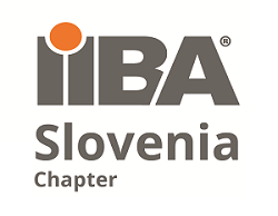 Vir: IIBA Slovenija