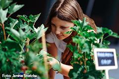 Mädchen bestaunt Pflanzen im Hochbeet.