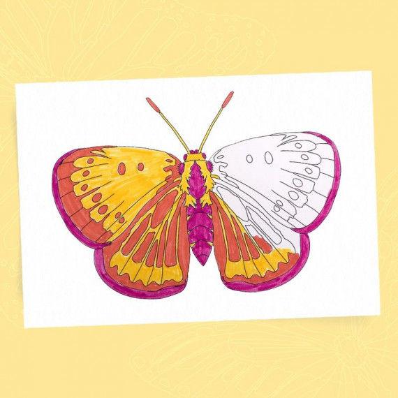 Schmetterlinge - Ausmalbilder PDF