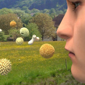 Allergien – Chaos im Körper