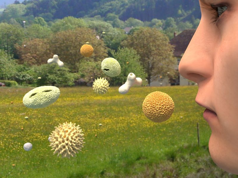 "ortrag: ""Allergien – Chaos im Körper"""