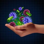 Immunsystem – was ist das eigentlich?