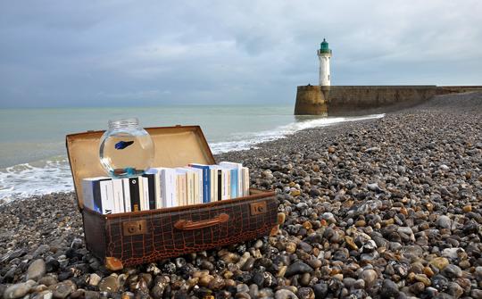 Bild, Bücher am Strand