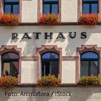 Rathaus-Ansicht mit roten Geranien vor dem Fenster