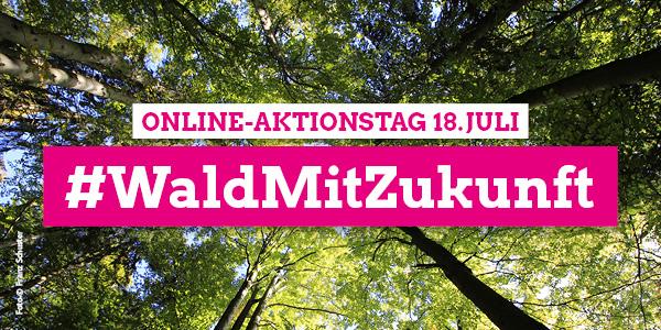 #WaldMitZukunft – Online-Aktionstag 18. Juli