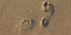 Die fünf wichtigsten Gründe, warum ein Markentracking unverzichtbar ist