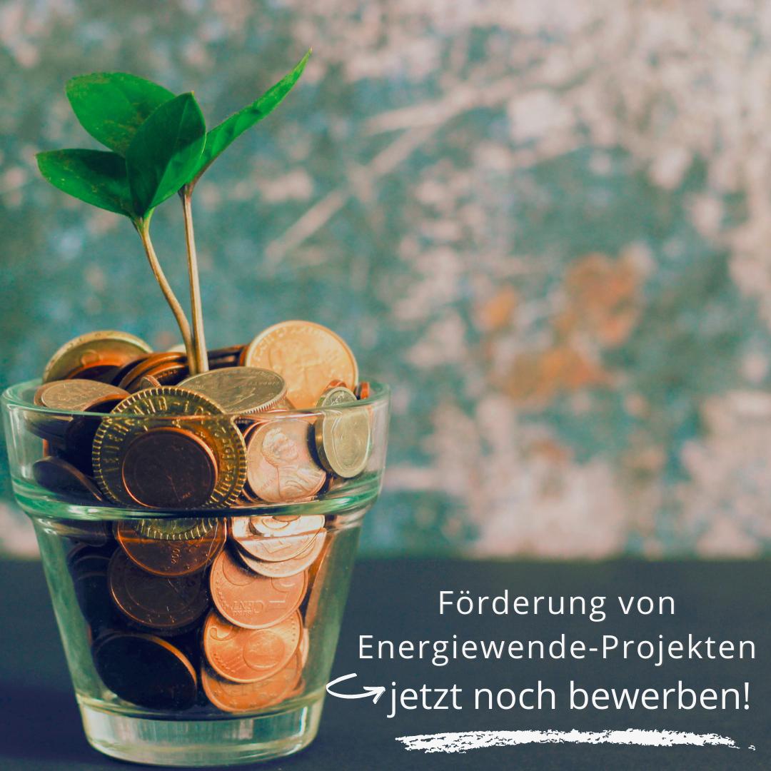 Grüner Strom Fonds