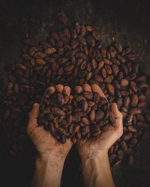 Devah Cacaozeremonie Clemens