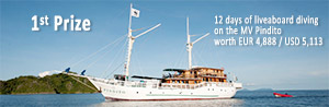 1st prize: A liveaboard diving safari in the best waters of Indonesia
