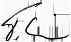 Signatur Thomas Riehl