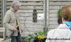 Genuss und Gesundheit aus dem eigenen Garten