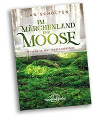 Wald mit einen Teppich aus Moos in sattem Grün