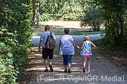 3 Personen (von hinten) spazieren durch einen Park