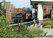 Grünstrukturen in der Stadt