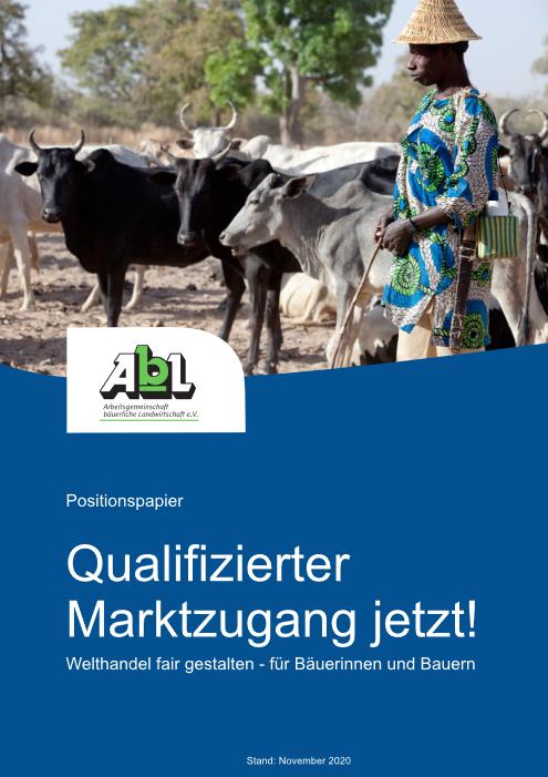 "Publikation ""Qualifizierter Marktzugang jetzt"" Cover"